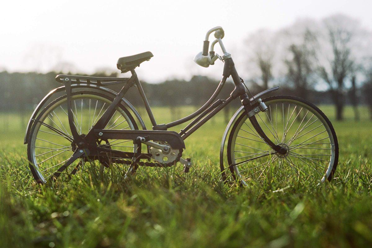 Schades Wohlfühlhotel Freizeit Radfahren